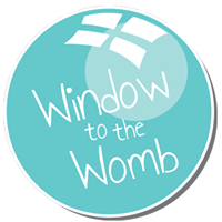 Window To The Womb discount code