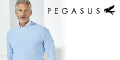 Pegasus Menswear voucher code